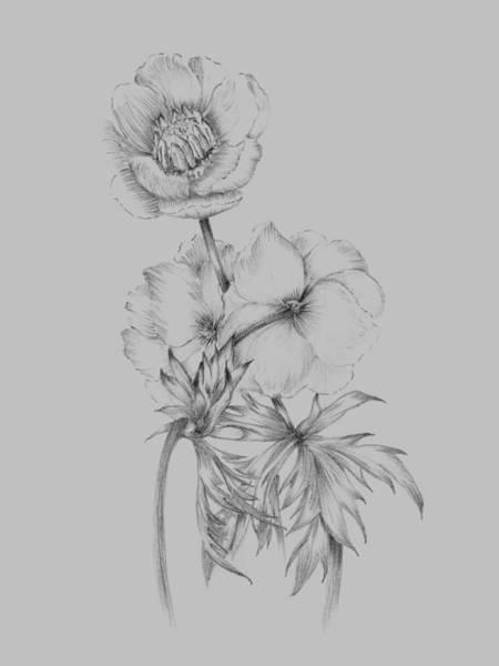 Love Mixed Media - Flower Illustration II by Naxart Studio