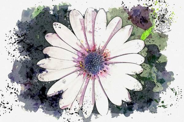 Painting - Flower Macro Nature Plant Macro Chichewa Close 2 -  Watercolor By Adam Asar by Adam Asar