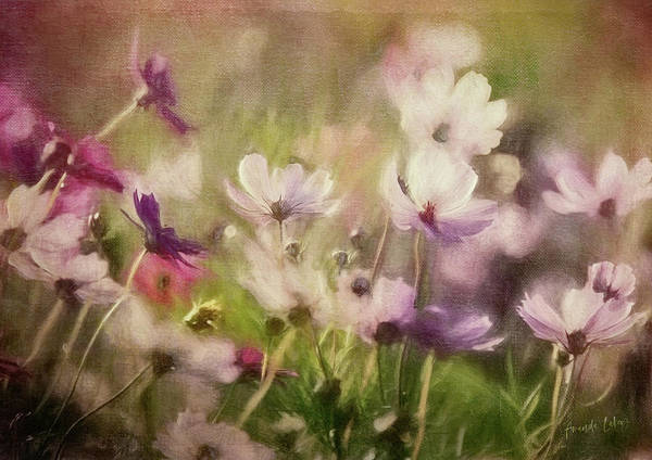 Wall Art - Mixed Media - Flower Meadow by Amanda Lakey