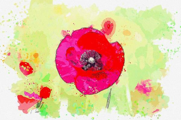 Painting - Flower Nature Peace Macro Spring Flowers Garden -  Watercolor By Adam Asar by Adam Asar