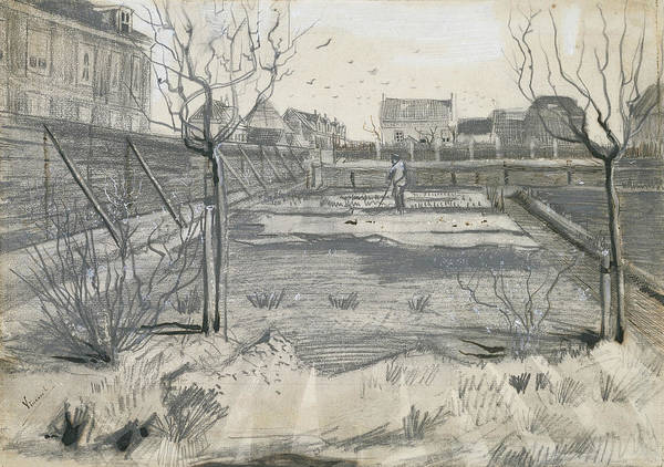 Drawing - Flower Nursery Of Pierre Van De Putte On The Schenkweg In The Hague by Vincent van Gogh