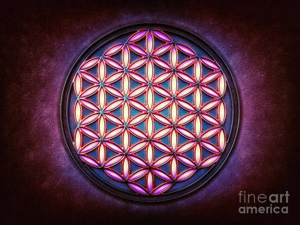 Wall Art - Digital Art - Flower Of Live - Light In The Darkness by Dirk Czarnota