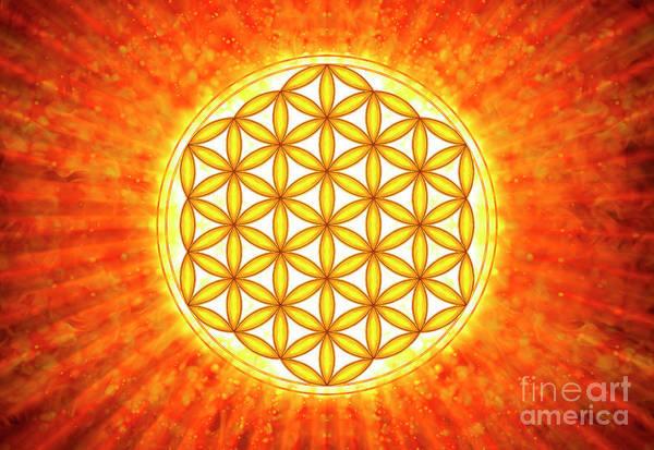 Wall Art - Digital Art - Flower Of Live - Sun Iv by Dirk Czarnota