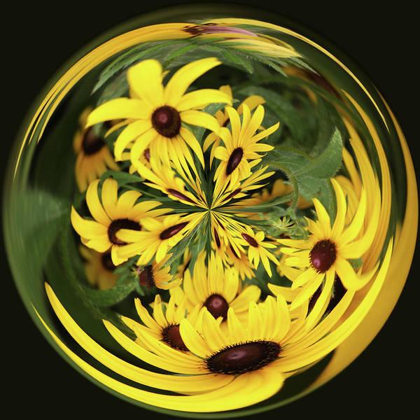Digital Art - Flower Power Crystalball by Ericamaxine Price