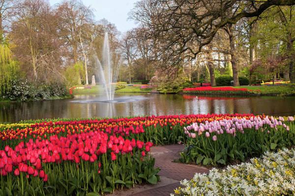 Photograph - Flower Power Keukenhof 2019. Tulips Lane by Jenny Rainbow