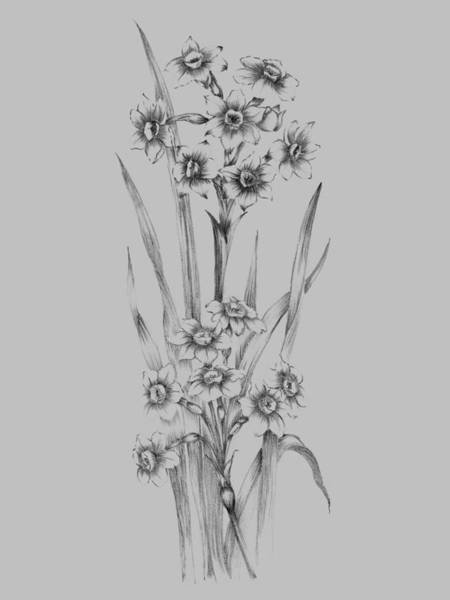 Love Mixed Media - Flower Sketch I by Naxart Studio