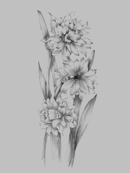 Love Mixed Media - Flower Sketch IIi by Naxart Studio