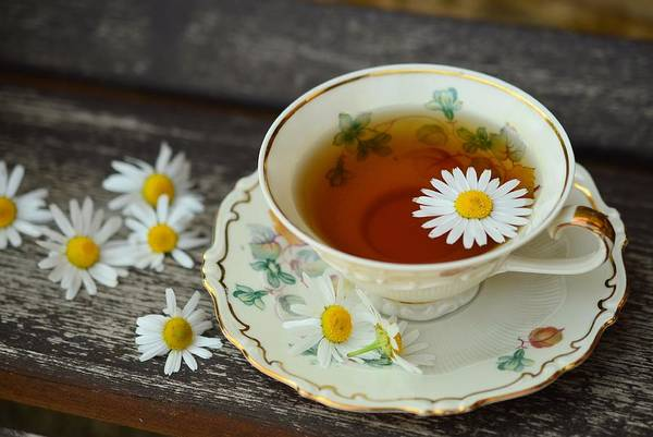 Photograph - Flower Tea by Top Wallpapers