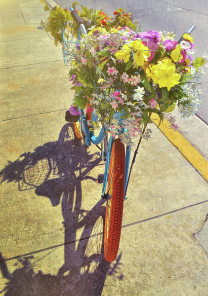 Photograph - Flowercycle by JAMART Photography