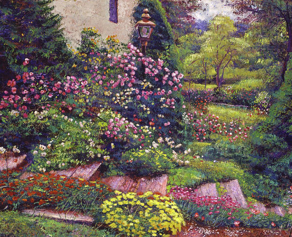 Painting - Flowers Along The Cottage Steps by David Lloyd Glover