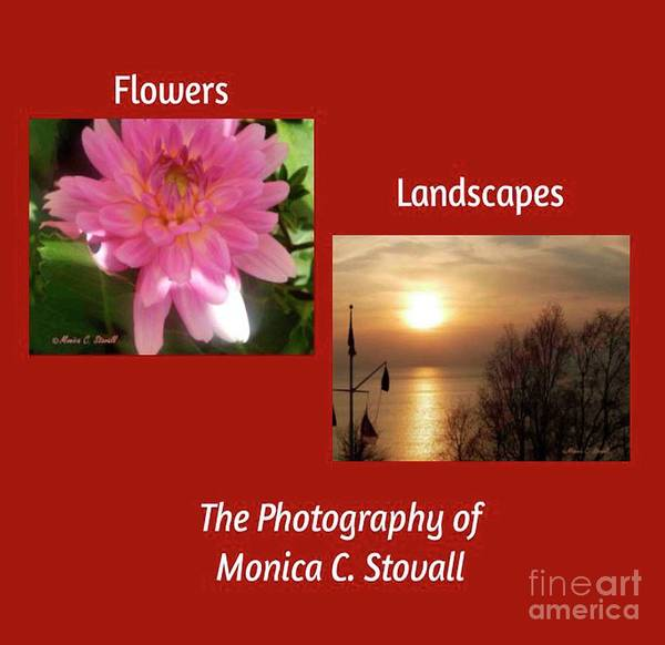 Wall Art - Photograph - Flowers And Landscapes by Monica C Stovall
