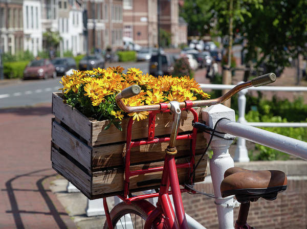 Photograph - Flowers In Haarlem by Georgia Fowler