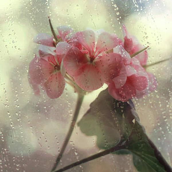 Rain Photograph - Flowers In The Rain by Yulia.m