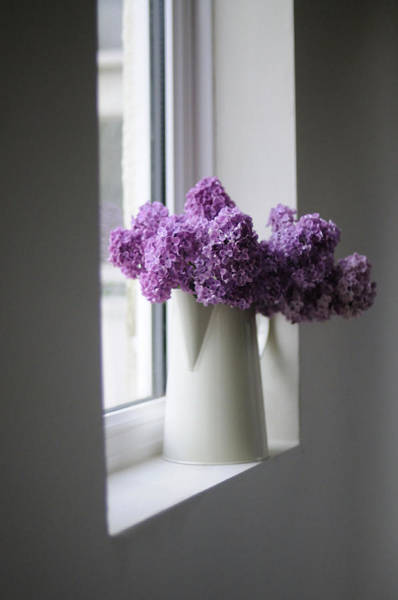 Vase Of Flowers Photograph - Flowers On Sill by Coco Am