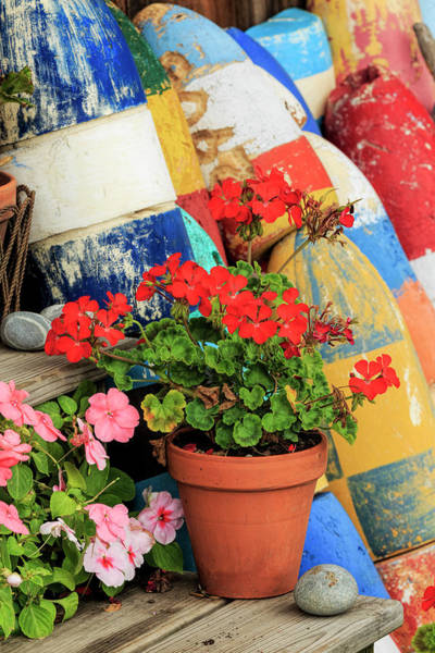 Wall Art - Photograph - Flowers On Steps Among Buoys, Rockport by Adam Jones
