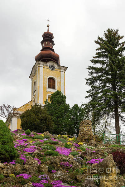 Photograph - Flowers On The Hill To The Church by Les Palenik