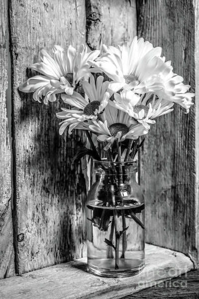 Wall Art - Photograph - Flowers Still Life 0945 by Edward Fielding