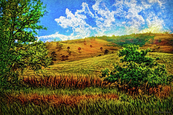 Digital Art - Flowing Fields by Joel Bruce Wallach