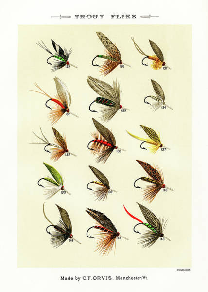 Drawing - Fly Fishing Lures 16 by David Letts