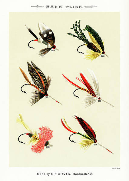 Drawing - Fly Fishing Lures 28 by David Letts