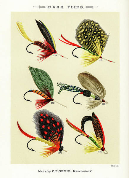 Drawing - Fly Fishing Lures 29 by David Letts