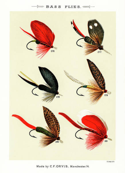 Drawing - Fly Fishing Lures 30 by David Letts