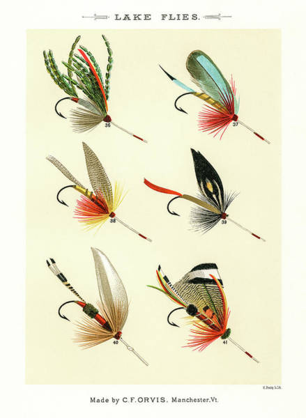 Drawing - Fly Fishing Lures 5 by David Letts