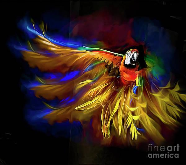 Digital Art - Flying Colors by Brian Tarr