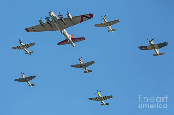 Photograph - Flying In Formation by Kevin McCarthy