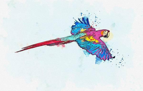 Painting - Flying Macaw -  Watercolor By Ahmet Asar by Ahmet Asar