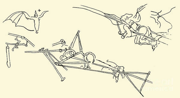 Wall Art - Drawing - Flying Machines Designed By Leonardo Da Vinci by Leonardo Da Vinci