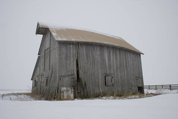 Photograph - Flying Snow Barn Buckle by Dylan Punke