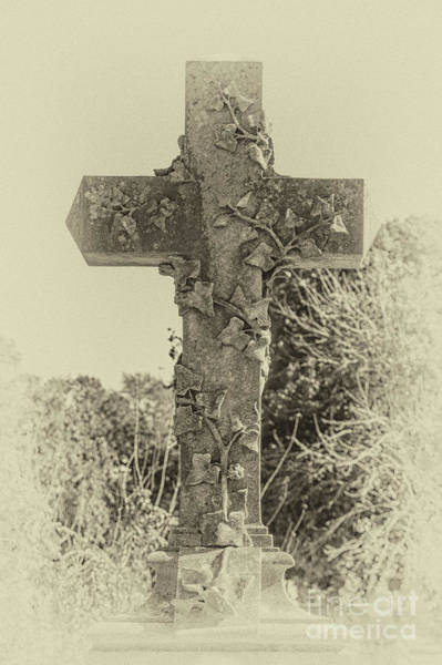 Photograph - Focus On The Cross - Magnolia Cemetery by Dale Powell
