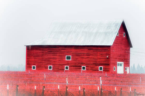 Photograph - Foggy Country Scene by Dee Browning