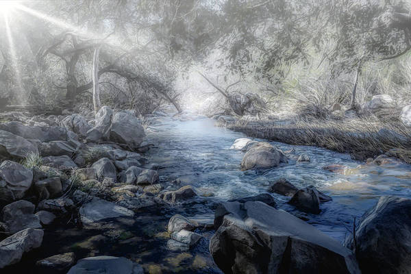 Photograph - Foggy Creek 2 by Alison Frank