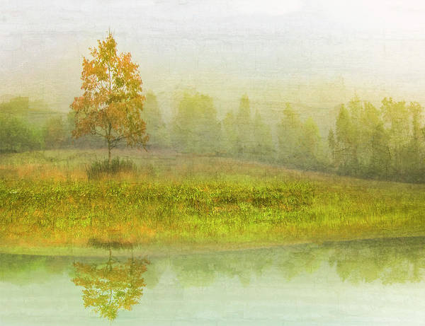Wall Art - Photograph - Foggy Meadow II by Debra and Dave Vanderlaan