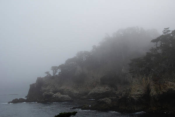 Photograph - Foggy Morning At Point Lobos 1 by Marie Leslie