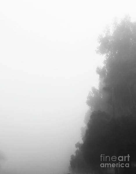 Photograph - Foggy Morning by Fei A