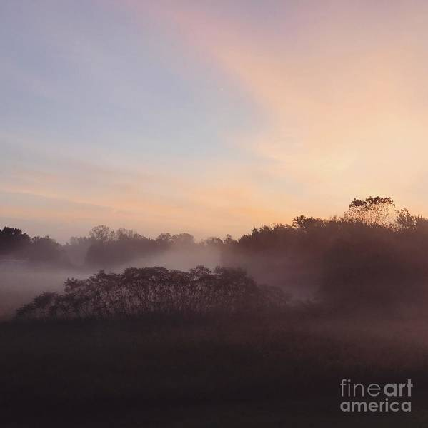 Wall Art - Photograph - Foggy Morning II by HD Connelly