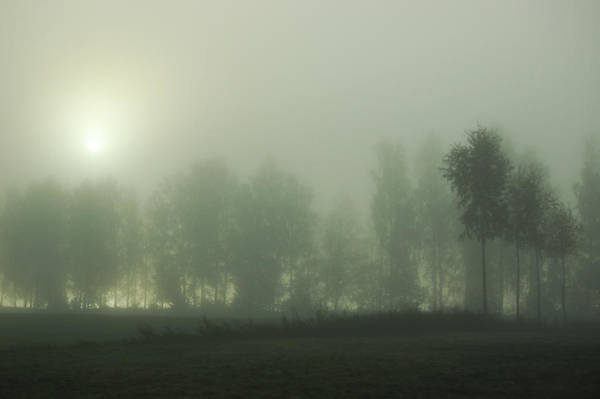 Photograph - Foggy Morning In The Countryside Of by Ceneri