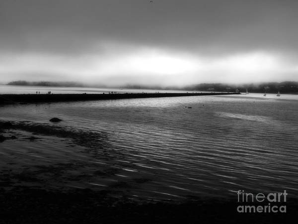 Photograph - Foggy Morning by Marcia Lee Jones