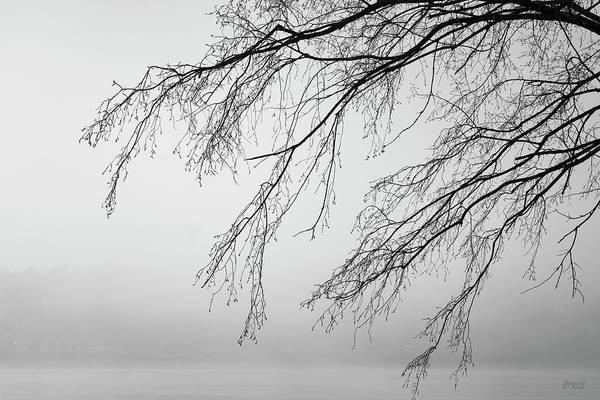 Photograph - Foggy Morning Taunton River II Bw by David Gordon