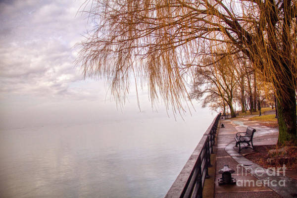 Photograph - Foggy Niagara by Jim Lepard