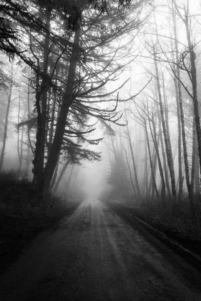 Photograph - Foggy Passage by Steven Clark