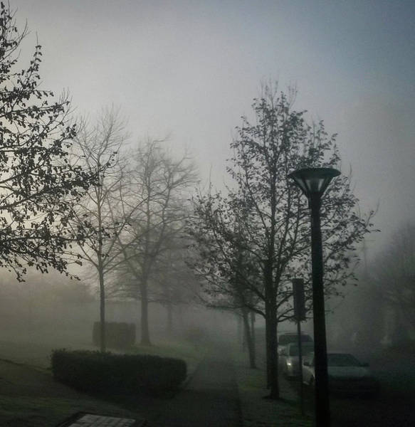 Photograph - Foggy Street by Juan Contreras