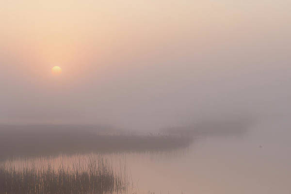 Photograph - Foggy Sunrise At Cheyenne Bottoms -01 by Rob Graham