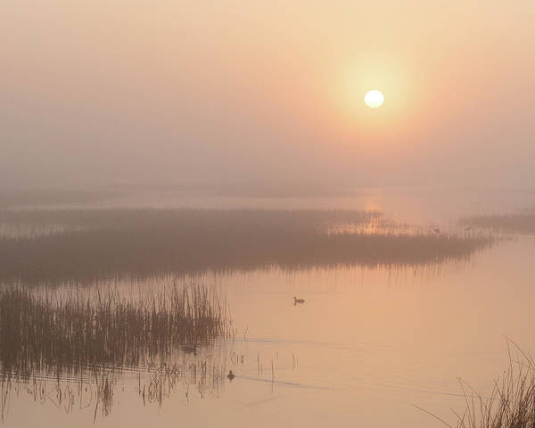 Photograph - Foggy Sunrise At Cheyenne Bottoms -02 by Rob Graham