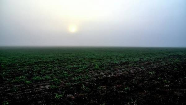 Photograph - Foggy Sunrise Field by Jerry Sodorff