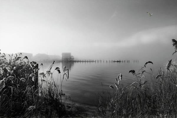 Photograph - Fogscape by John Rivera