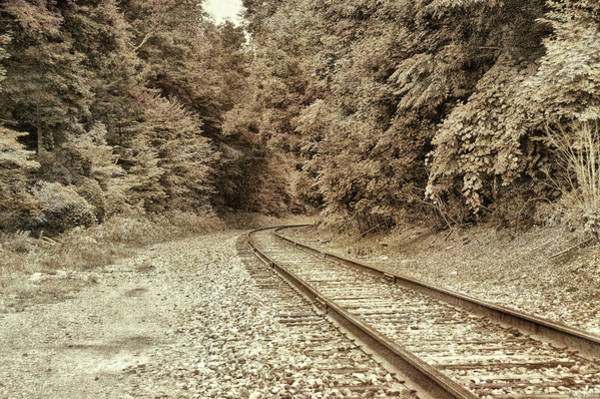Photograph - Follow That Track by Jamart Photography